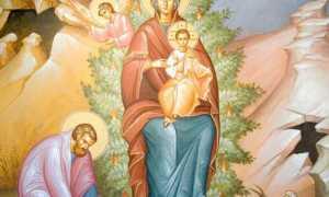 Неопалимая купина икона божией матери значение