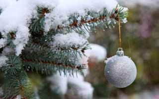 Заговоры на старый новый год: обряды против бедности и невезения